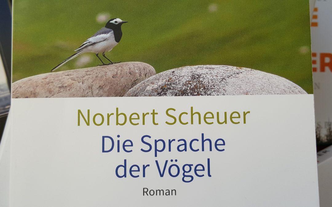"Bundeswehr Afghanistan Norbert Scheuer ""Die Sprache der Vögel"" Buchcover"